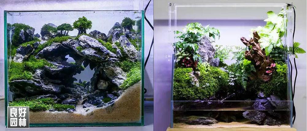此类型石头适用于:水陆缸假山造景 微景观造景,盆景假山造景等.